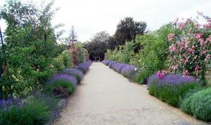 15_entre_jardins_tunnel